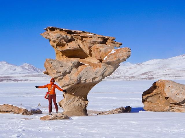 Salar de Uyuni - Arbol de Piedra