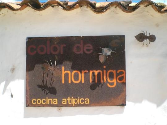Hormigas_culonas1 - die kolumbianische Küche