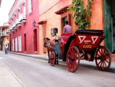 viventura Karibik Cartagena Horse Carriage